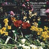 Whitebox Stereo by Luke Abbott