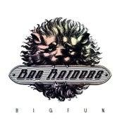 Big Fun EP by Bag Raiders