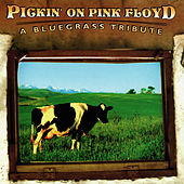 Play & Download Pickin' On Pink Floyd: A Bluegrass Tribute by Pickin' On | Napster