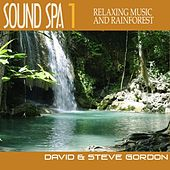Sound Spa 1 - Relaxing Music and Rainforest by David and Steve Gordon