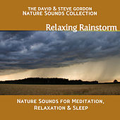 Play & Download Relaxing Rainstorm: Nature Sounds for Meditation, Relaxation and Sleep by David and Steve Gordon | Napster