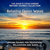 Relaxing Ocean Waves: Nature Sounds for Meditation, Relaxation and Sleep by David and Steve Gordon