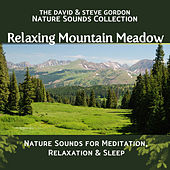 Play & Download Relaxing Mountain Meadow: Nature Sounds for Meditation, Relaxation and Sleep by David and Steve Gordon | Napster