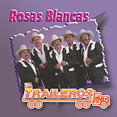 Play & Download Rosas Blancas by Los Traileros Del Norte | Napster