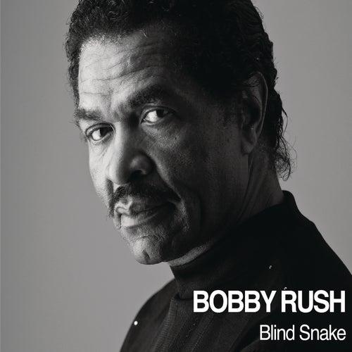 Blind Snake by Bobby Rush