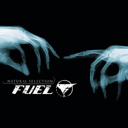 Play & Download Natural Selection by Fuel | Napster