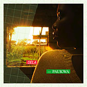 Paukwa by Various Artists