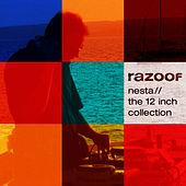 Play & Download Nesta: 12 Inch Collection by Razoof | Napster