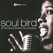 Soul Bird - 20 Sensational Sexy Soul Singers by Various Artists