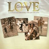 Everlasting Love - 16 Songs Celebrating The Joy Of Love by Various Artists