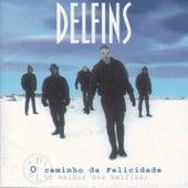 Play & Download A Caminho Da Felicidade by Delfins | Napster