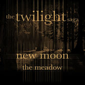 The Twilight Saga by Various Artists