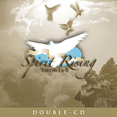 Spirit Rising Vol. I & II by Various Artists
