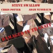 Damaged In Transit by Steve Swallow