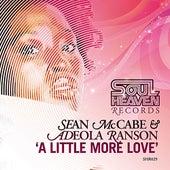 A Little More Love by Sean McCabe