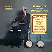 Fragments of My Imagicnation by Butch Robins