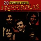 Play & Download 20 Grandes Exitos by Los Terricolas | Napster