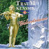 Play & Download Traum Klassik 6 by Großes Salon Orchester Wien | Napster