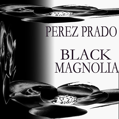 Black Magnolia by Perez Prado