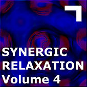 Synergic Relaxation – Session 4 by Various Artists