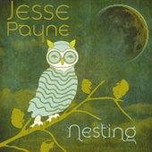 Play & Download Nesting by Jesse Payne   Napster
