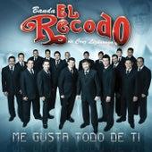 Play & Download Me Gusta Todo De Ti by Banda El Recodo | Napster