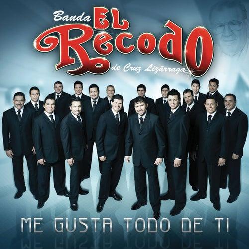Me Gusta Todo De Ti by Banda El Recodo