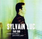 Trio Sud by Sylvain Luc/Bireli Lagrene