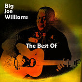 Play & Download The Best Of by Big Joe Williams | Napster