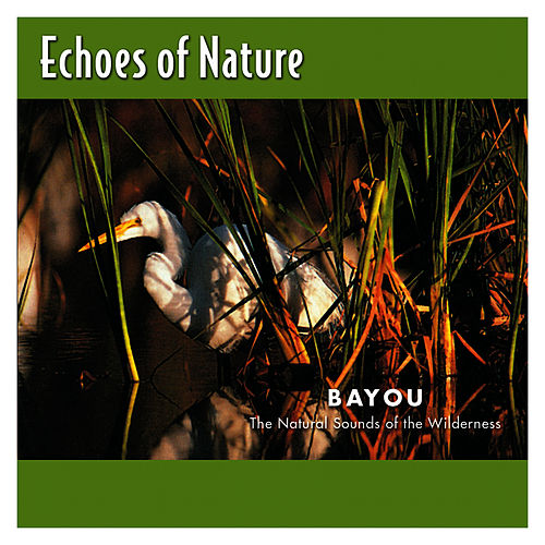 Bayou by Echoes of Nature