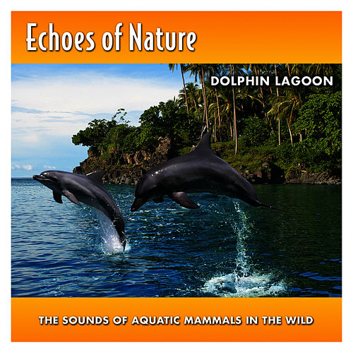 Dolphin Lagoon by Echoes of Nature