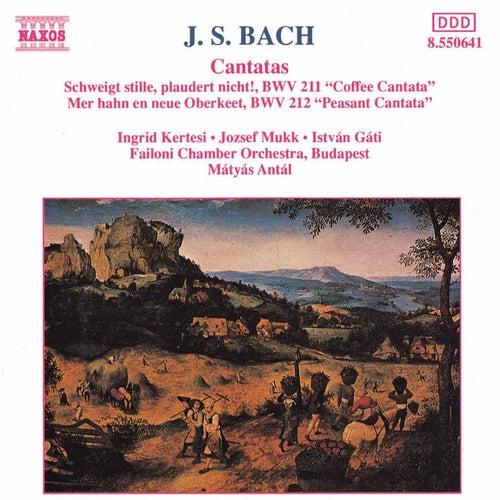 J.S. Bach: Coffee Cantata/Peasant Cantata by Johann Sebastian Bach