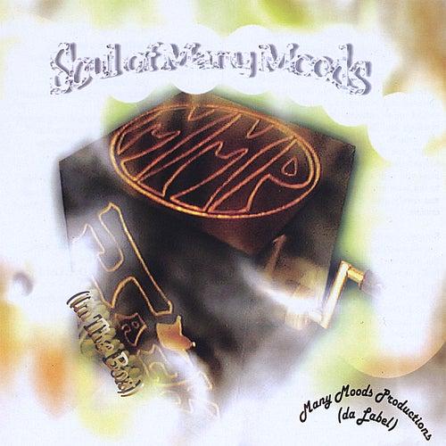Soul of Many Moods (Jack in the Box) by Linda Felder