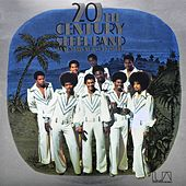 Play & Download Warm Heart Cold Steel by 20th Century Steel Band | Napster