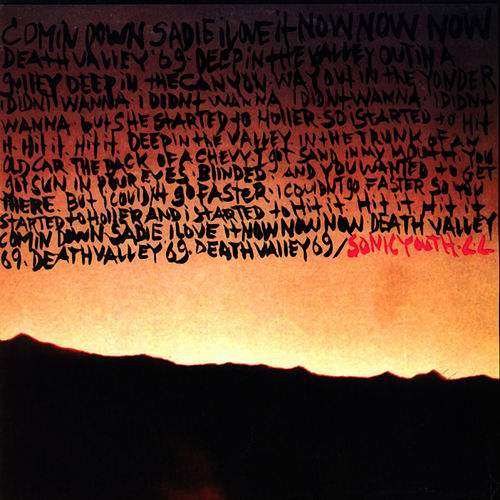 Death Valley '69 by Sonic Youth