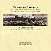 Play & Download Haydn in London by La Gaia Scienza | Napster