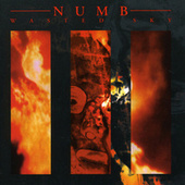 Play & Download Wasted Sky by Numb | Napster