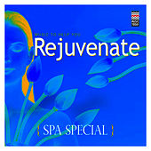 Play & Download Spa Special - Music to  Help You Rejuvenate by Various Artists | Napster