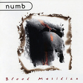 Play & Download Blood Meridian by Numb | Napster