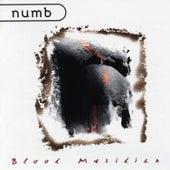 Blood Meridian by Numb