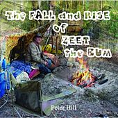 The Fall and Rise of Zeet the Bum by Peter Hill