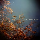 Ep by Never Shout Never
