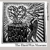 Play & Download Carpenter Bird by David Wax Museum | Napster