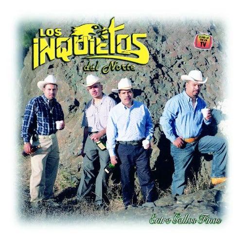 Play & Download Entre Gallos Finos by Los Inquietos Del Norte | Napster