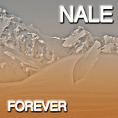 Play & Download Forever by Nale | Napster