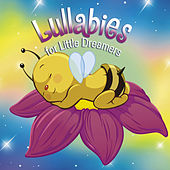 Play & Download Lullabies for Little Dreamers by Various Artists | Napster