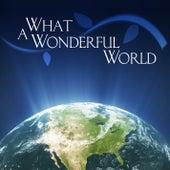 Play & Download What A Wonderful World by KnightsBridge | Napster