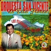 Play & Download Los Mosaicos Del  Milenio by Orquesta San Vicente de Tito Flores | Napster