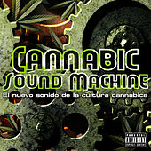 Cannabic Sound Machine by Various Artists