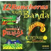 Play & Download 12 Rancheras con Banda by Various Artists | Napster